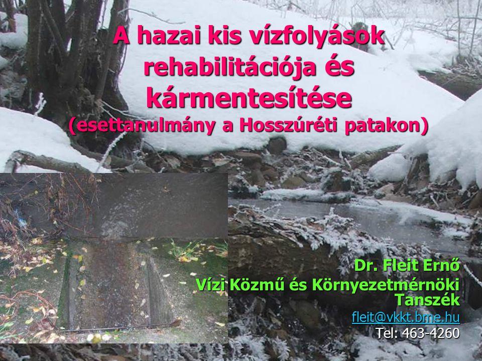 A hazai kis vízfolyások rehabilitációja és kármentesítése (esettanulmány a Hosszúréti patakon)