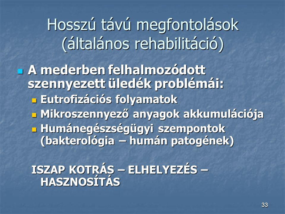 Hosszú távú megfontolások (általános rehabilitáció)