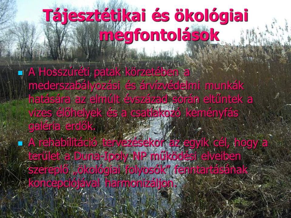 Tájesztétikai és ökológiai megfontolások