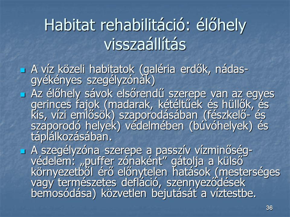Habitat rehabilitáció: élőhely visszaállítás