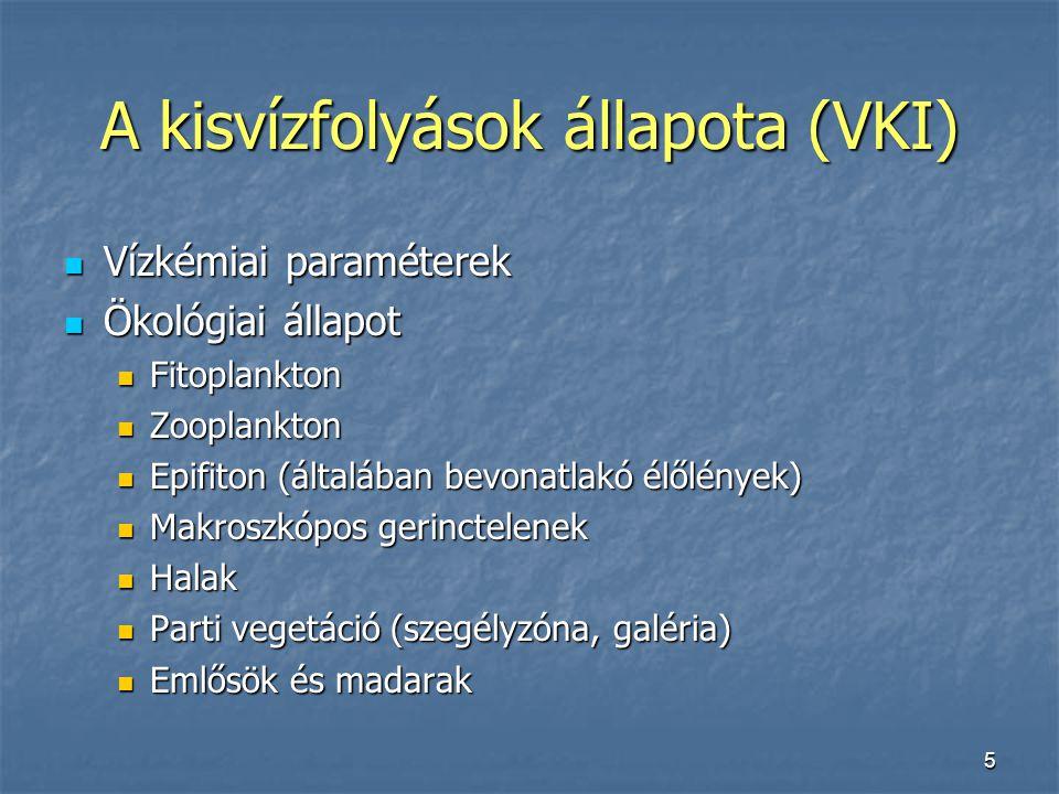 A kisvízfolyások állapota (VKI)