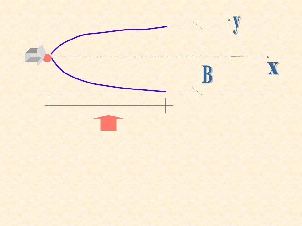 y x B
