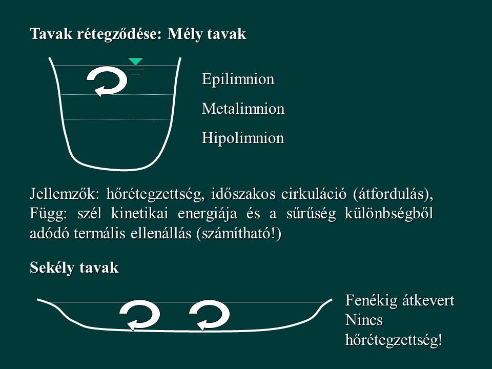 Tavak rétegződése: Mély tavak
