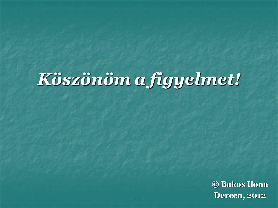 Köszönöm a figyelmet! © Bakos Ilona Dercen, 2012