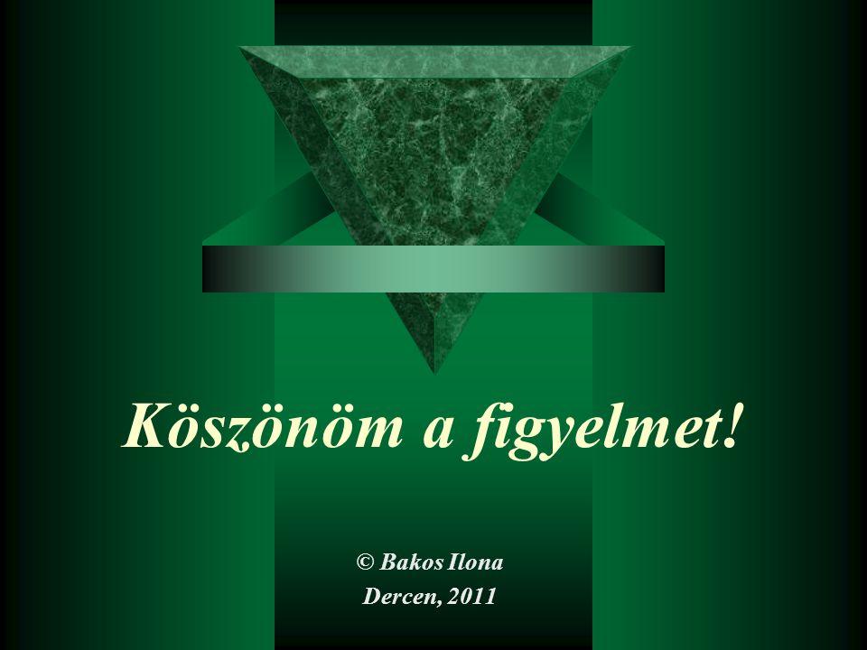 Köszönöm a figyelmet! © Bakos Ilona Dercen, 2011