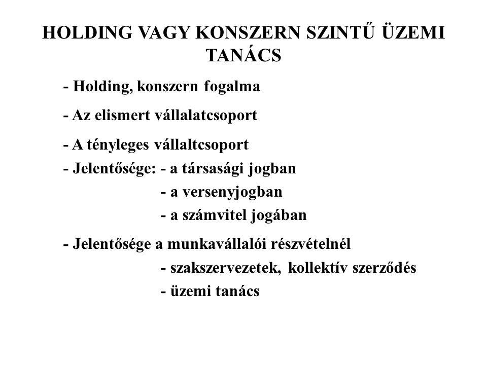 HOLDING VAGY KONSZERN SZINTŰ ÜZEMI TANÁCS