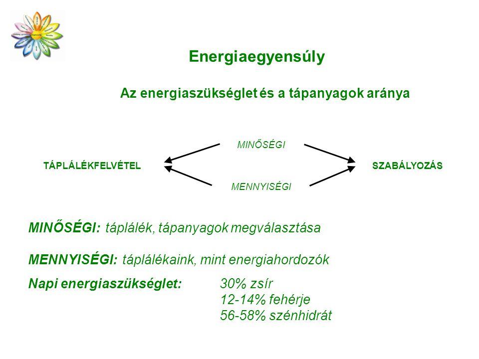 Az energiaszükséglet és a tápanyagok aránya