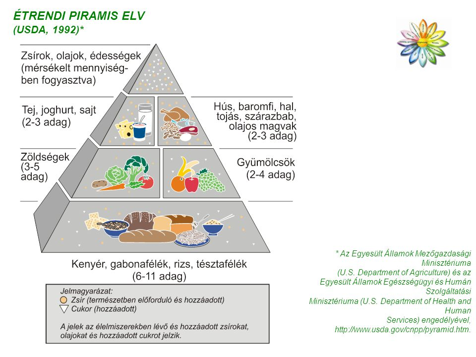 ÉTRENDI PIRAMIS ELV (USDA, 1992)*