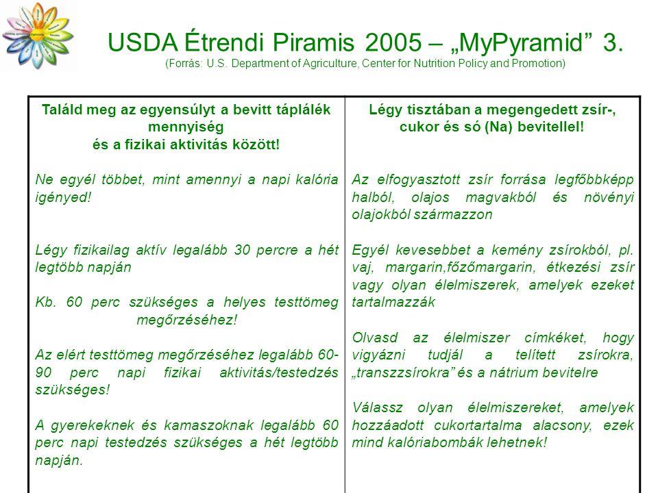 "USDA Étrendi Piramis 2005 – ""MyPyramid 3. (Forrás: U. S"