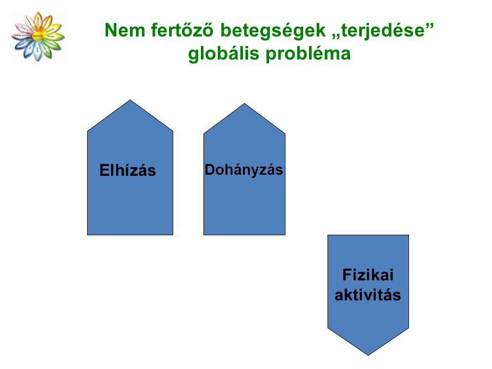 """Nem fertőző betegségek """"terjedése globális probléma"""