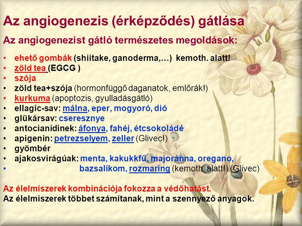 Az angiogenezis (érképződés) gátlása