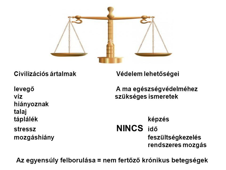 Az egyensúly felborulása = nem fertőző krónikus betegségek
