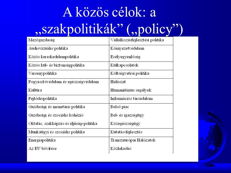 """A közös célok: a """"szakpolitikák (""""policy )"""