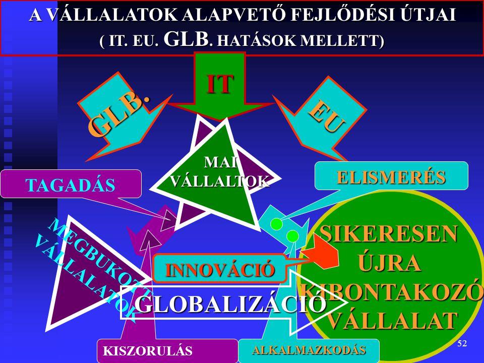 GLB. IT EU SIKERESEN ÚJRA KIBONTAKOZÓ VÁLLALAT GLOBALIZÁCIÓ
