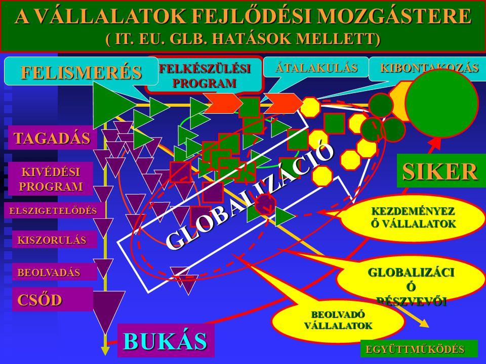 GLOBALIZÁCIÓ SIKER BUKÁS