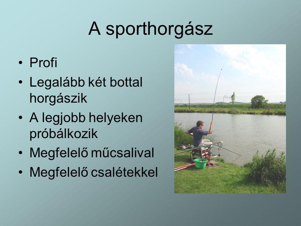 A sporthorgász Profi Legalább két bottal horgászik