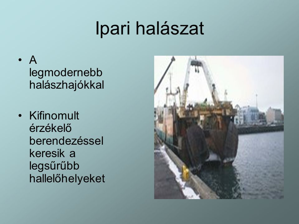 Ipari halászat A legmodernebb halászhajókkal