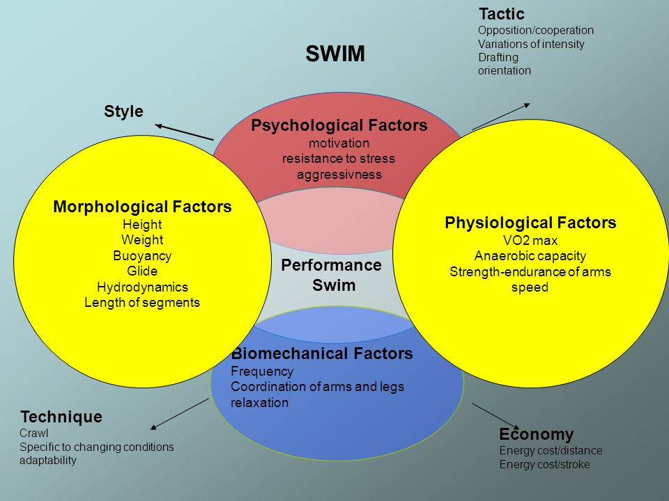 Physiological Factors Morphological Factors