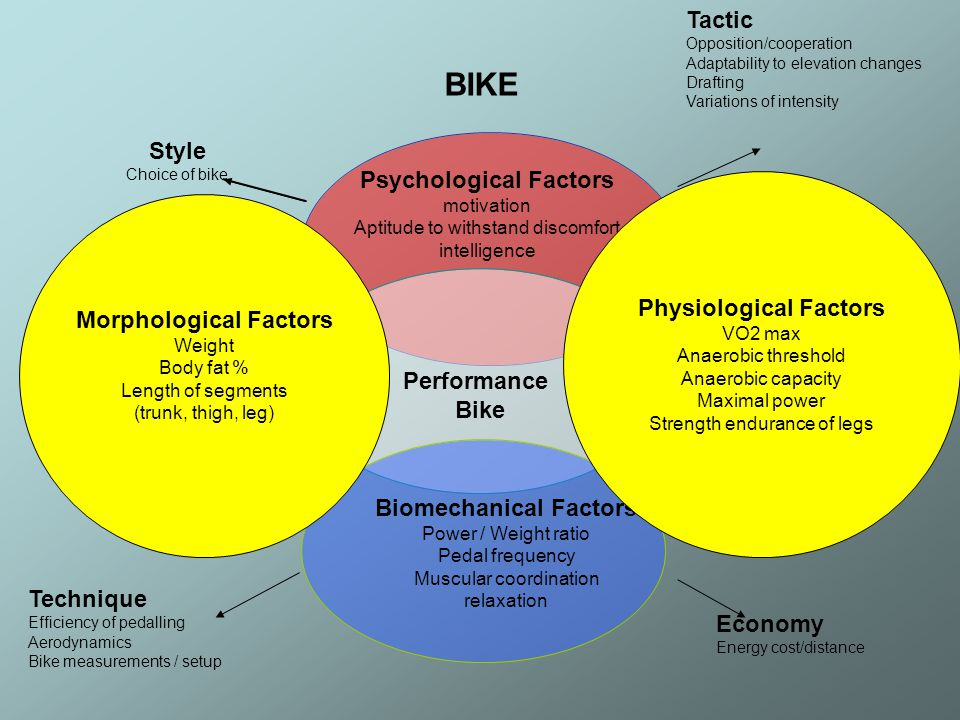 Physiological Factors Morphological Factors Biomechanical Factors