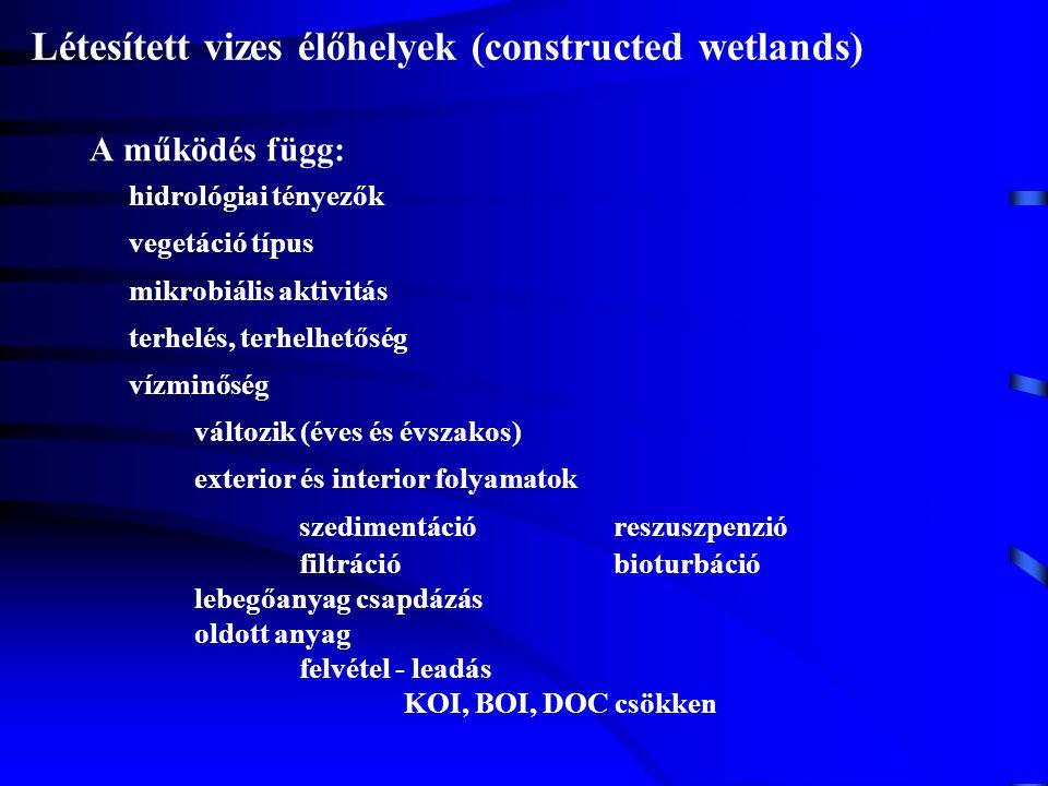 Létesített vizes élőhelyek (constructed wetlands)