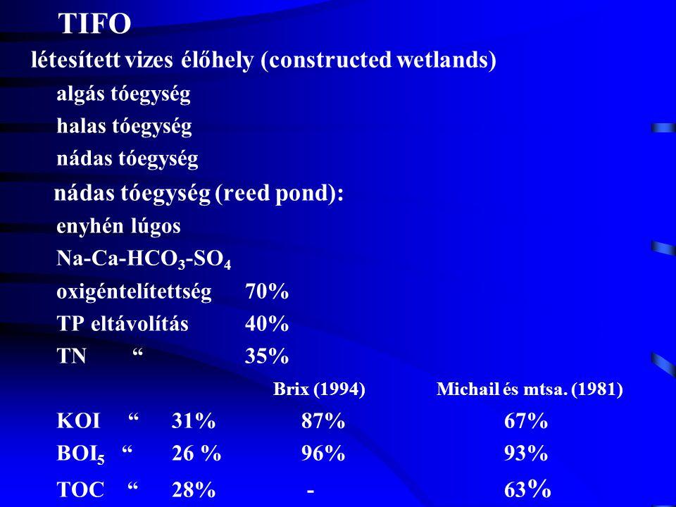 TIFO létesített vizes élőhely (constructed wetlands) algás tóegység