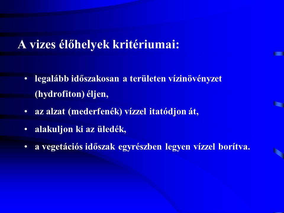 A vizes élőhelyek kritériumai: