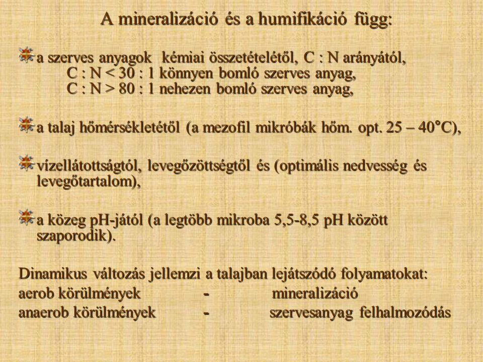 A mineralizáció és a humifikáció függ: