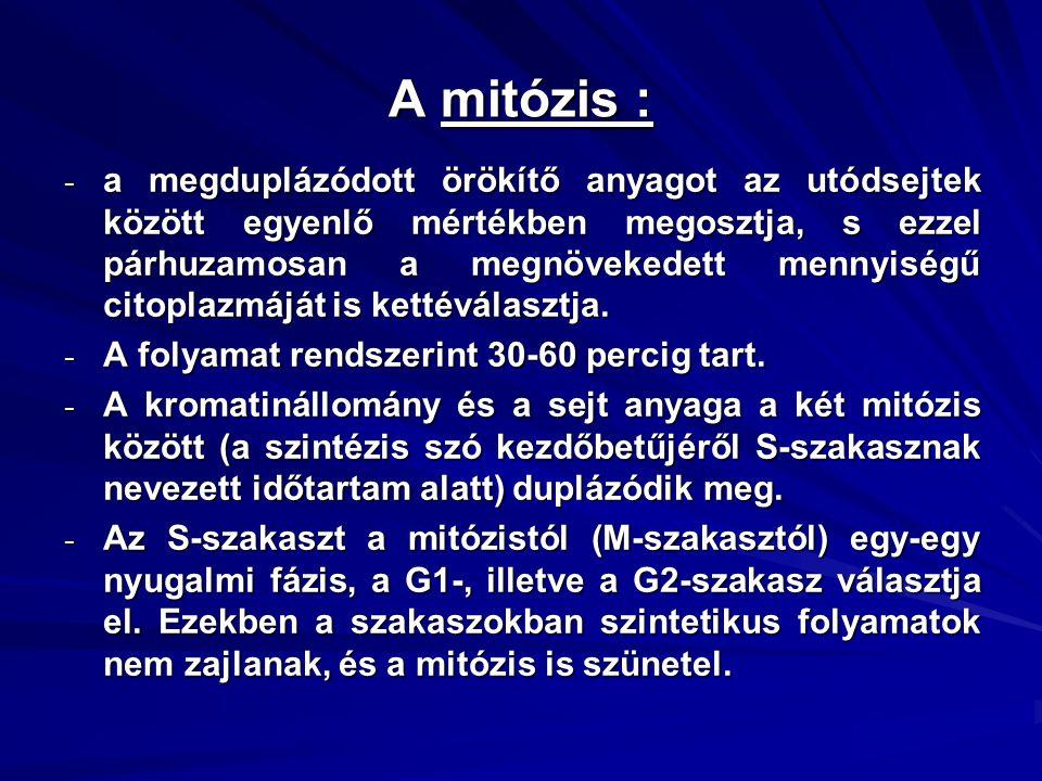 A mitózis :