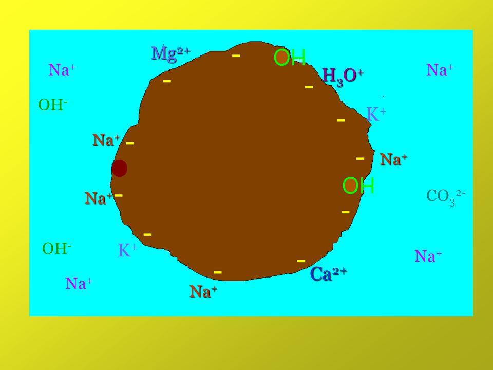 Mg2+ Na+ Na+ H3O+ OH- K+ Na+ Na+ Na+ CO32- OH- K+ Na+ Ca2+ Na+ Na+