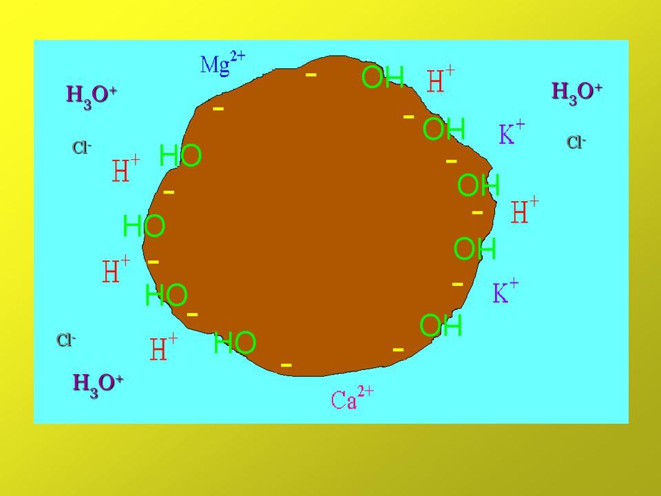 H3O+ H3O+ Cl- Cl- Cl- H3O+