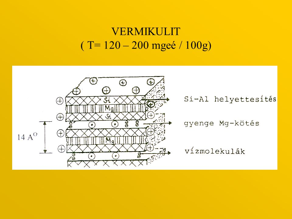 VERMIKULIT ( T= 120 – 200 mgeé / 100g)