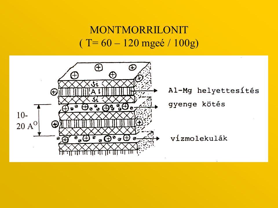 MONTMORRILONIT ( T= 60 – 120 mgeé / 100g)