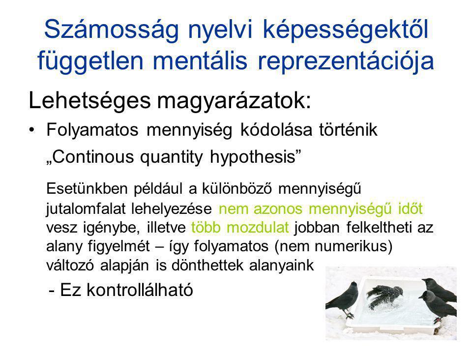 Számosság nyelvi képességektől független mentális reprezentációja