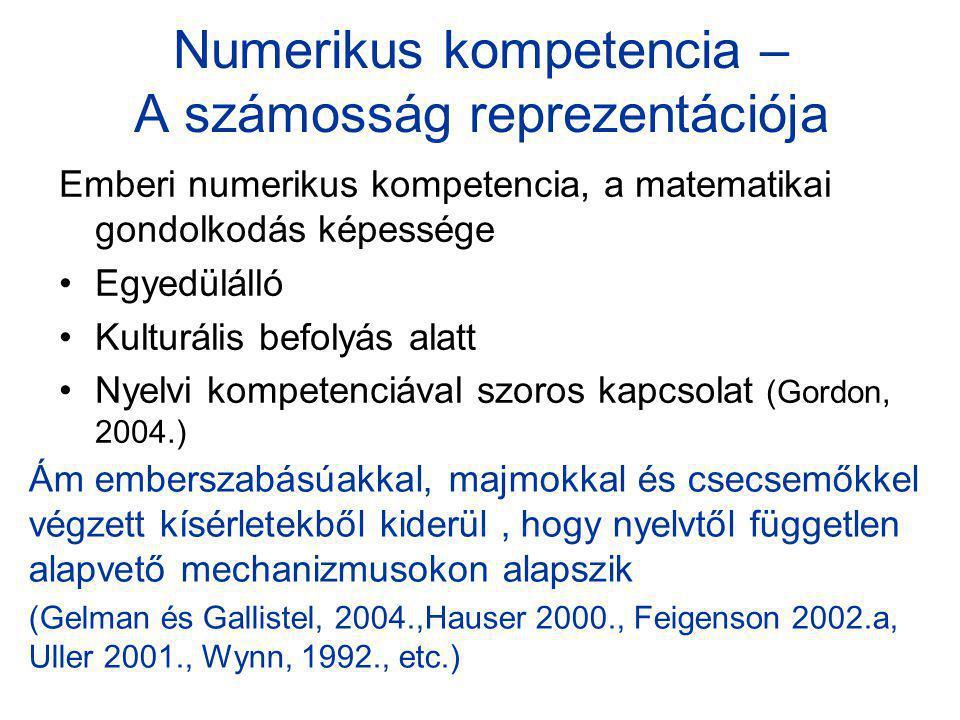 Numerikus kompetencia – A számosság reprezentációja