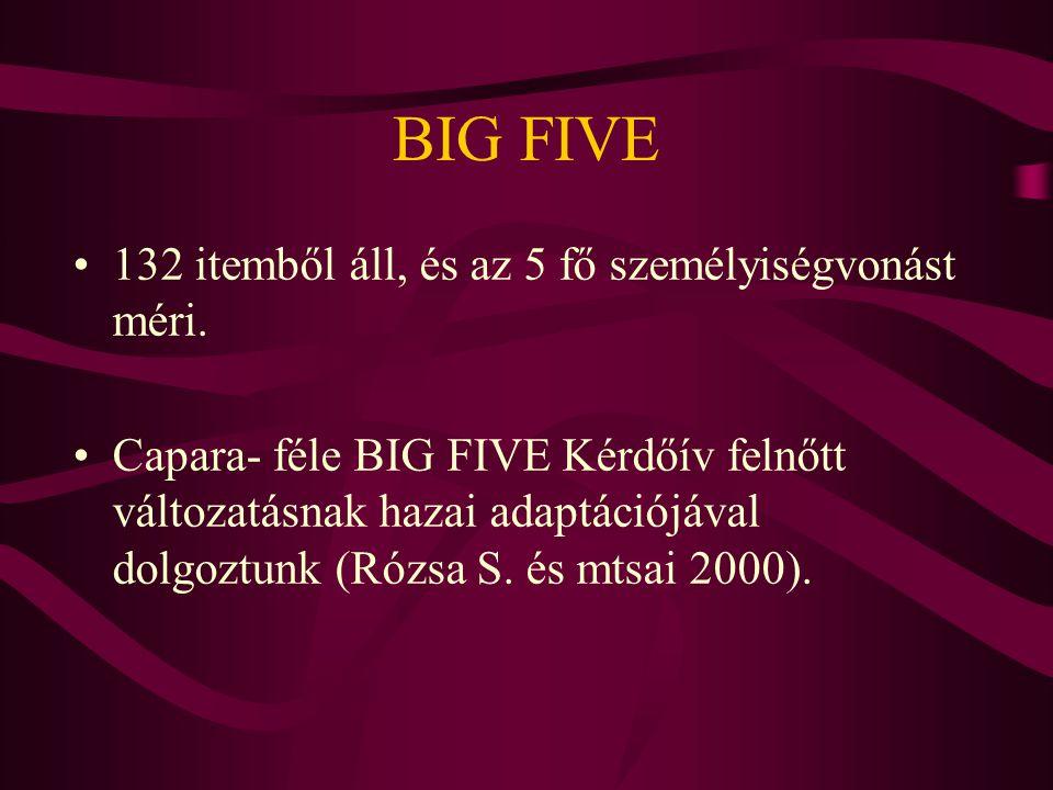 BIG FIVE 132 itemből áll, és az 5 fő személyiségvonást méri.