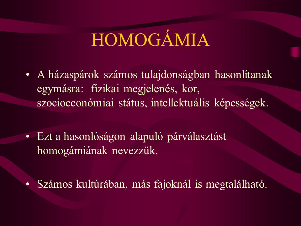 HOMOGÁMIA A házaspárok számos tulajdonságban hasonlítanak egymásra: fizikai megjelenés, kor, szocioeconómiai státus, intellektuális képességek.