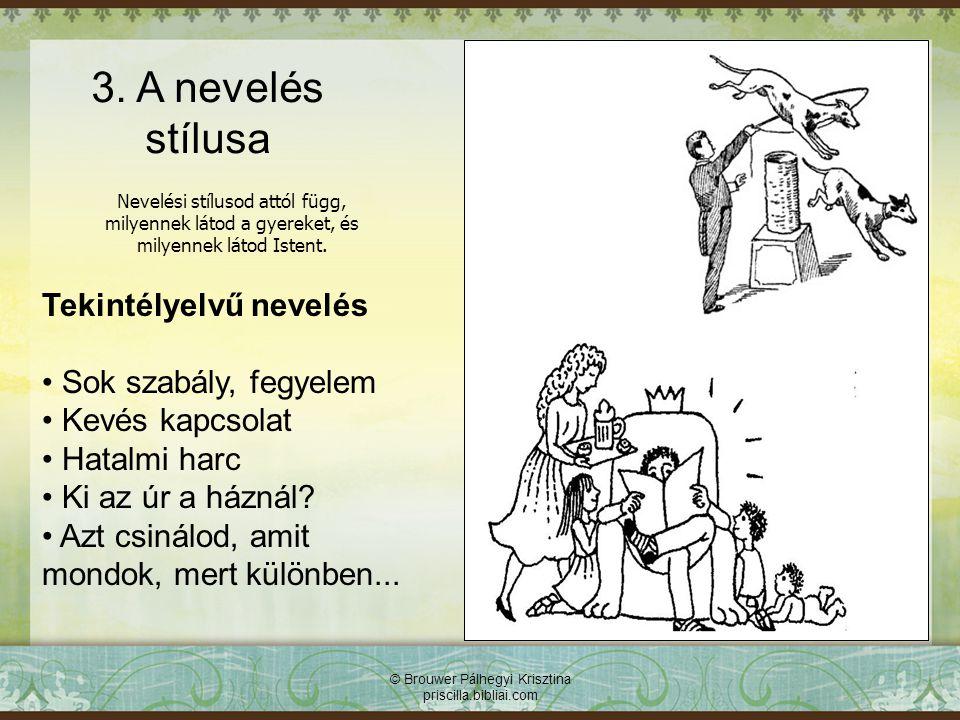 3. A nevelés stílusa Tekintélyelvű nevelés Sok szabály, fegyelem