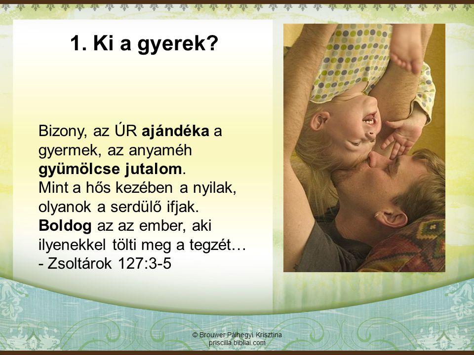 © Brouwer Pálhegyi Krisztina priscilla.bibliai.com