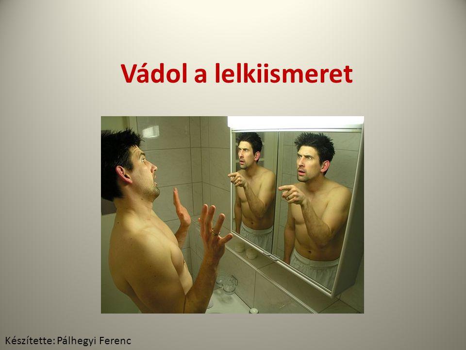 Vádol a lelkiismeret Készítette: Pálhegyi Ferenc