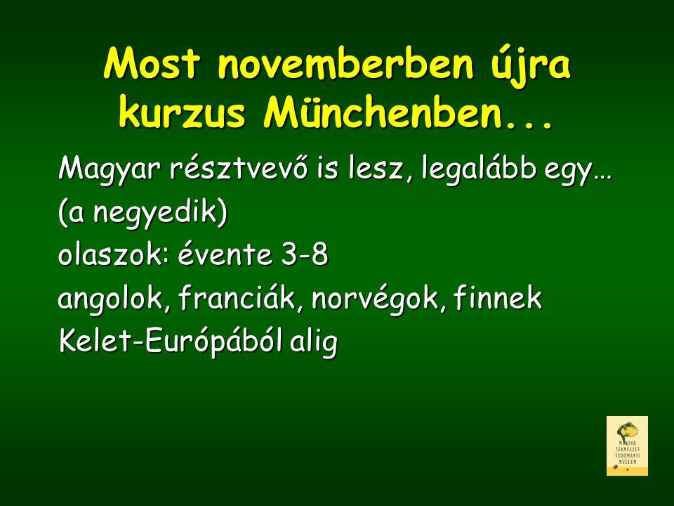 Most novemberben újra kurzus Münchenben...