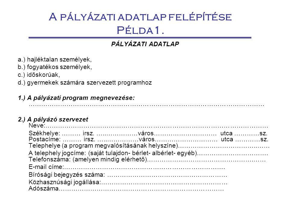 A pályázati adatlap felépítése Példa1.