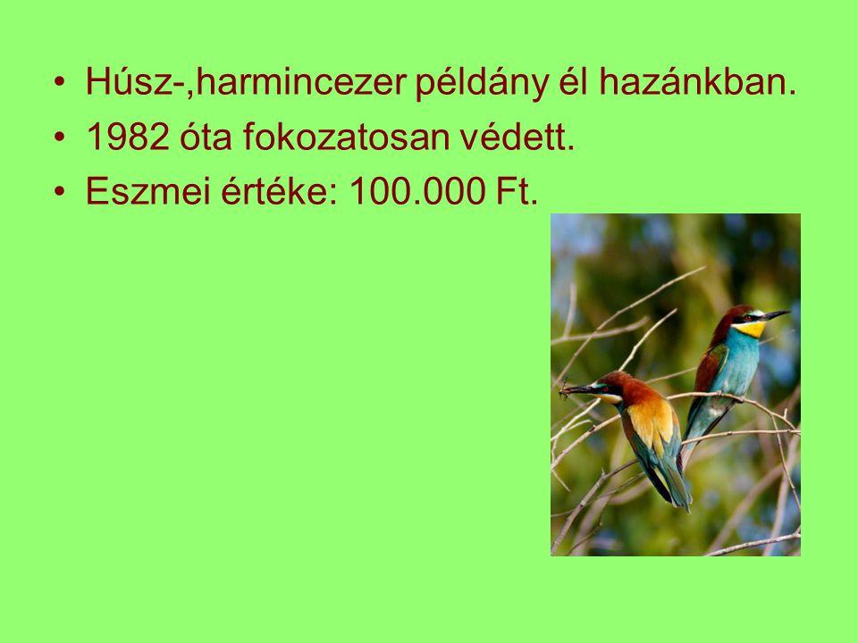 Húsz-,harmincezer példány él hazánkban.