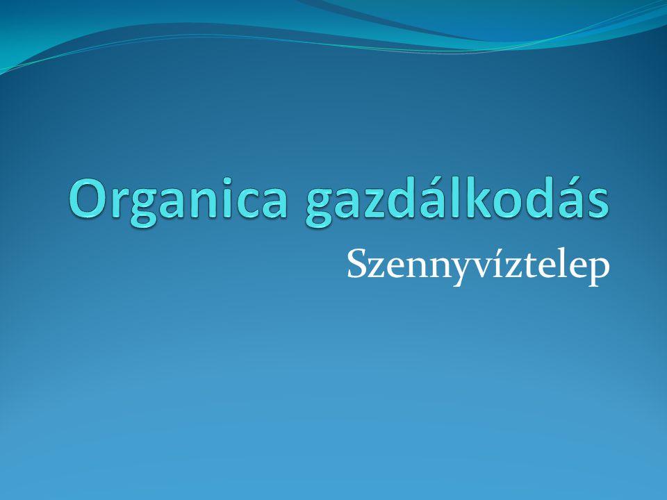 Organica gazdálkodás Szennyvíztelep