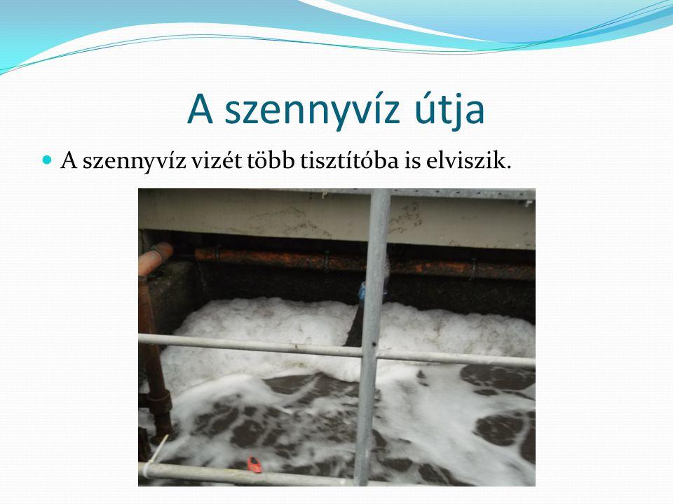 A szennyvíz útja A szennyvíz vizét több tisztítóba is elviszik.