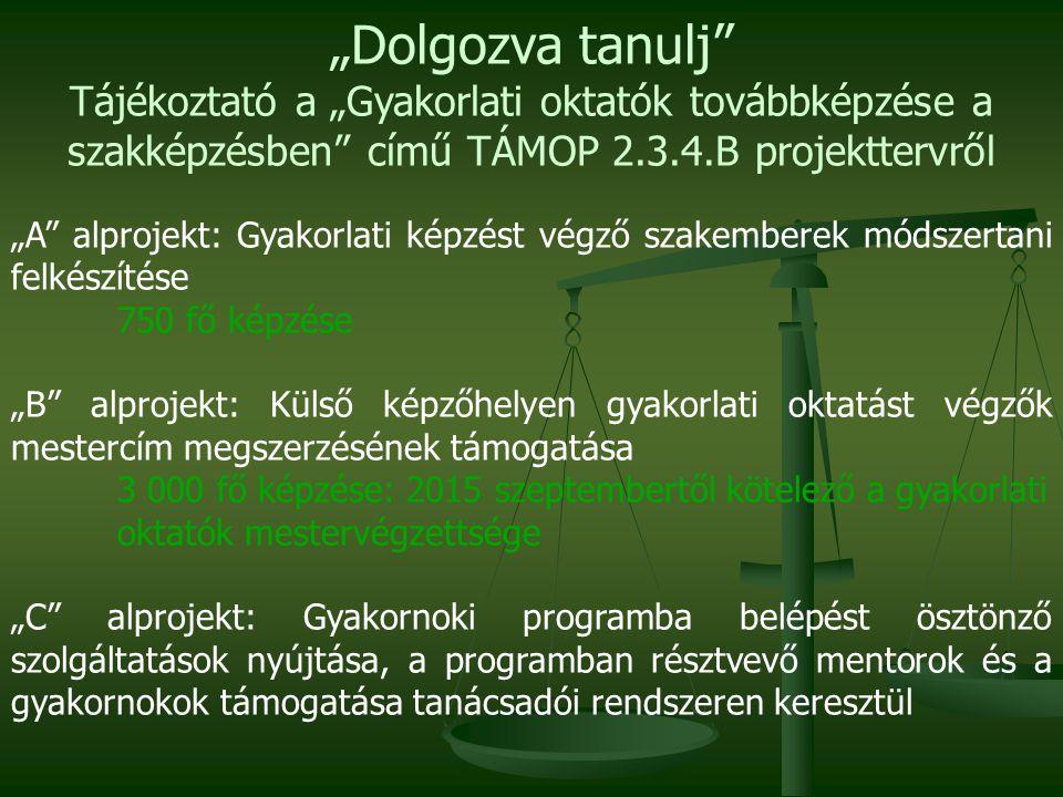 """""""Dolgozva tanulj Tájékoztató a """"Gyakorlati oktatók továbbképzése a szakképzésben című TÁMOP 2.3.4.B projekttervről."""