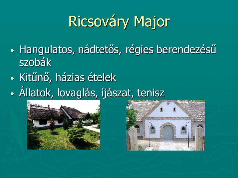 Ricsováry Major Hangulatos, nádtetős, régies berendezésű szobák