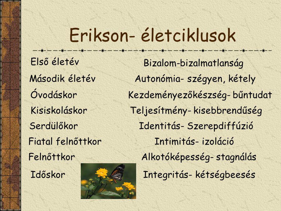 Erikson- életciklusok