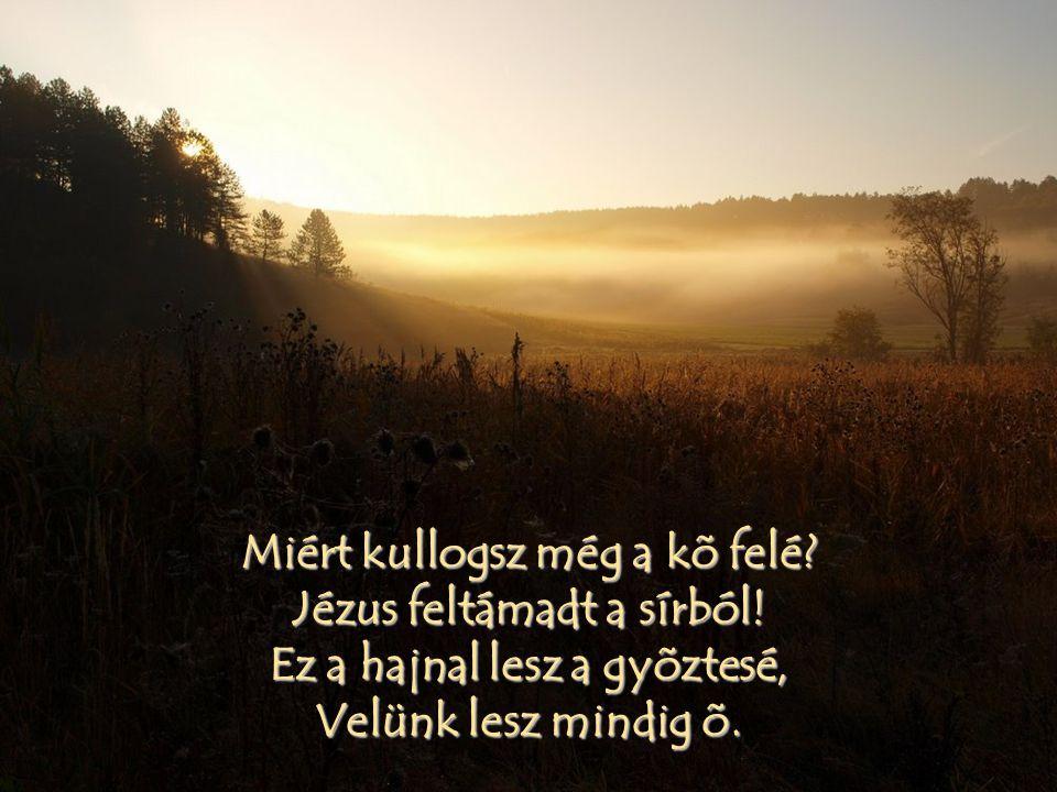 Miért kullogsz még a kõ felé. Jézus feltámadt a sírból