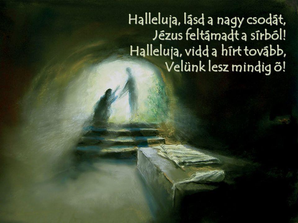 Halleluja, lásd a nagy csodát, Jézus feltámadt a sírból