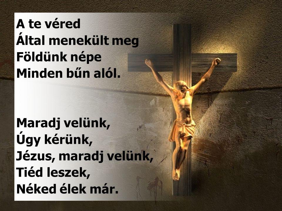A te véred Által menekült meg. Földünk népe. Minden bűn alól. Maradj velünk, Úgy kérünk, Jézus, maradj velünk,